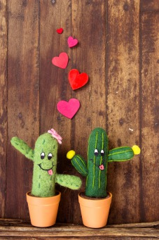 Fair Trade Photo Greeting Card Cactus, Colour image, Couple, Door, Friendship, Funny, Heart, Love, Peru, Red, South America, Valentines day, Wood