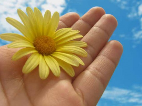 Fair Trade Photo Greeting Card Activity, Closeup, Colour image, Flower, Giving, Hand, Horizontal, Peru, Seasons, Sky, South America, Summer, Thank you, Yellow