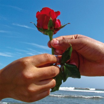 Fair Trade Photo Greeting Card Activity, Beach, Blue, Closeup, Colour image, Flower, Friendship, Giving, Hand, Horizontal, Love, Nature, Outdoor, People, Peru, Red, Rose, Seasons, Sky, South America, Summer, Thinking of you, Together, Valentines day, Water