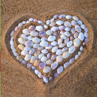 Fair Trade Photo Greeting Card Asia, Beach, Closeup, Colour image, Heart, Horizontal, India, Love, Sand, Shell, Summer, Valentines day