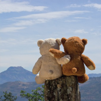 Fair Trade Photo Greeting Card Activity, Colour image, Cute, Day, Friendship, Hugging, Love, Mountain, Outdoor, Peru, Rural, South America, Teddybear, Together, Tree