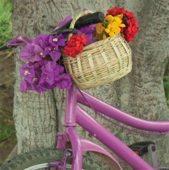 Fair Trade Photo Greeting Card Basket, Bicycle, Closeup, Colour image, Day, Flower, Mothers day, Outdoor, Peru, Purple, South America, Summer, Transport, Tree, Valentines day, Vertical
