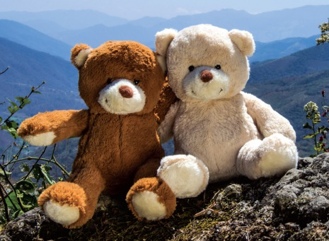 Fair Trade Photo Greeting Card Activity, Colour image, Cute, Day, Friendship, Hugging, Love, Outdoor, Peru, Scenic, South America, Teddybear, Together