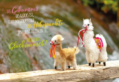 Fair Trade Photo Greeting Card Activity, Animals, Bride, Brown, Colour image, Couple, Horizontal, Llama, Nature, Peru, South America, Together, Walking, Water, Waterfall, White