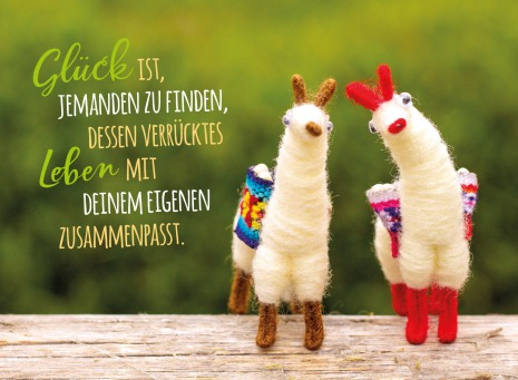 Fair Trade Photo Greeting Card Animals, Colour image, Horizontal, Llama, Love, Marriage, Peru, South America, Together, Valentines day, Wedding