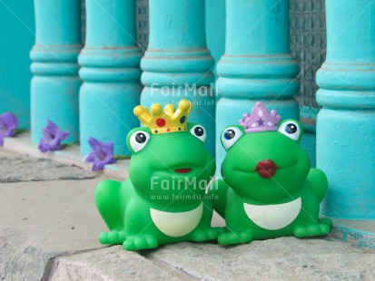 Fair Trade Photo Animals, Couple, Cute, Frog, Love, Marriage, Prince, Princess, Together, Wedding