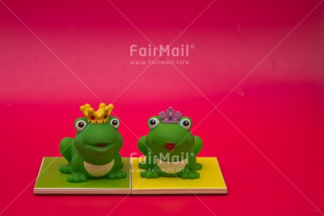 Fair Trade Photo Animals, Cute, Frog, Love, Marriage, Prince, Princess, Together, Wedding