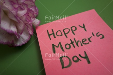 Fair Trade Photo Colour image, Flower, Horizontal, Letter, Mothers day, Peru, Pink, South America, Studio