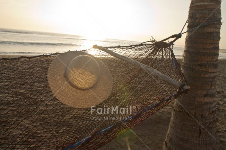 Fair Trade Photo Colour image, Evening, Hammock, Hat, Holiday, Light, Outdoor, Palmtree, Peru, Relax, South America, Summer, Sun, Travel, Tree