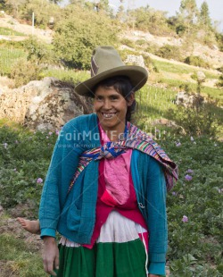 Fair Trade Photo Activity, Agriculture, Clothing, Colour image, Ethnic-folklore, Farmer, Looking at camera, One woman, People, Peru, Portrait headshot, Rural, Smiling, South America, Traditional clothing, Vertical