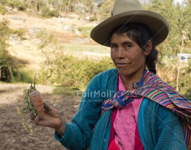 Fair Trade Photo Activity, Agriculture, Carrot, Clothing, Colour image, Ethnic-folklore, Farmer, Harvest, Horizontal, Looking at camera, One woman, People, Peru, Portrait headshot, Rural, South America, Traditional clothing