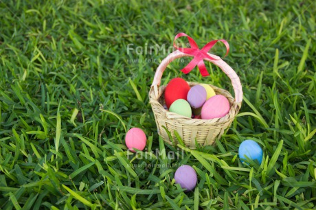 Fair Trade Photo Colour image, Colourful, Easter, Egg, Grass, Green, Horizontal, Peru, Seasons, South America, Spring