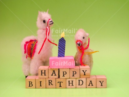 Fair Trade Photo Animals, Birthday, Cake, Candle, Colour image, Gift, Horizontal, Indoor, Letters, Llama, Peru, South America, Text, Wood
