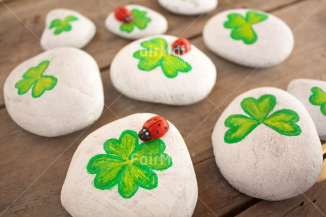 Fair Trade Photo Clover, Colour image, Exams, Good luck, Green, Horizontal, Indoor, Ladybug, New Job, Peru, South America, Stone, White, Wood