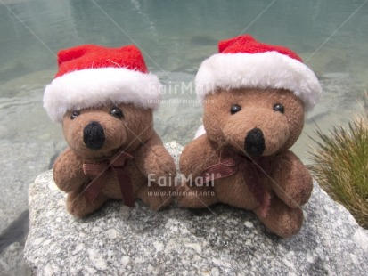 Fair Trade Photo Christmas, Colour image, Friendship, Horizontal, Outdoor, Peru, South America, Tabletop, Teddybear, Together, Water