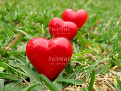 Fair Trade Photo Closeup, Grass, Green, Heart, Horizontal, Love, Peru, Red, South America, Valentines day