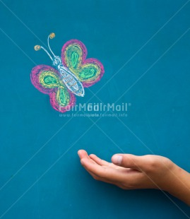 Fair Trade Photo Butterfly, Colour image, Condolence/Sympathy, Friendship, Get well soon, Good luck, Hand, Peru, South America, Vertical