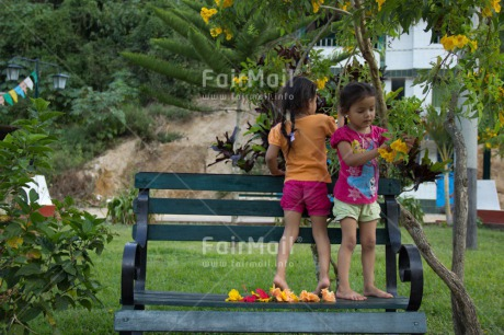 Fair Trade Photo Activity, Colour image, Cooperation, Cute, Day, Flower, Friendship, Garden, Horizontal, Latin, Outdoor, People, Peru, Playing, South America, Summer, Together, Two girls