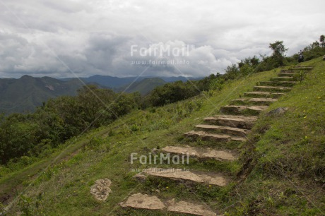 Fair Trade Photo Colour image, Forest, Green, Horizontal, Mountain, Peru, Road, Scenic, South America, Travel