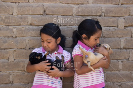 Fair Trade Photo Activity, Animals, Caring, Carrying, Colour image, Cute, Dog, Horizontal, Hugging, Love, People, Peru, Puppy, South America, Twin, Two girls