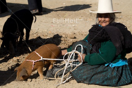 Fair Trade Photo Activity, Agriculture, Animals, Clothing, Colour image, Farmer, Hat, Horizontal, Looking at camera, Market, One woman, People, Peru, Pig, Portrait fullbody, Rural, Sombrero, South America, Traditional clothing