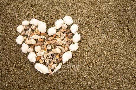 Fair Trade Photo Beach, Colour image, Fathers day, Heart, Holiday, Love, Marriage, Mothers day, Outdoor, Peru, Seasons, Shell, South America, Summer, Valentines day, Wedding, White