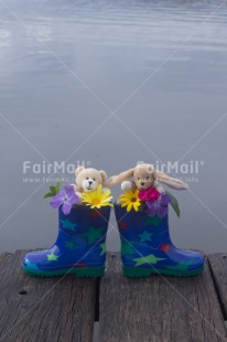 Fair Trade Photo Animals, Bear, Blue, Boot, Colour image, Flowers, Multi-coloured, Outdoor, Peru, Rabbit, Rain, Shoe, South America, Star, Vertical, Water, Wood