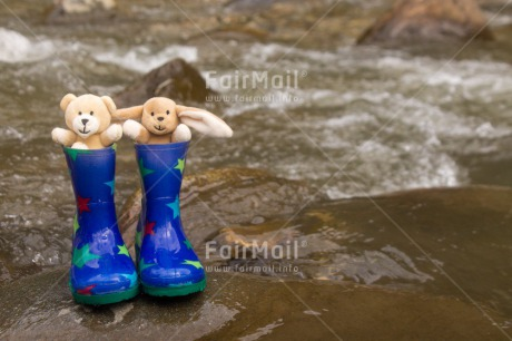 Fair Trade Photo Animals, Bear, Blue, Boot, Colour image, Horizontal, Multi-coloured, Outdoor, Peru, Rabbit, Rain, River, Shoe, South America, Star, Stone, Water