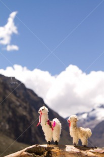 Fair Trade Photo Activity, Animals, Colour image, Day, Llama, Mountain, Nature, Outdoor, Peru, South America, Toy, Travel, Travelling, Vertical