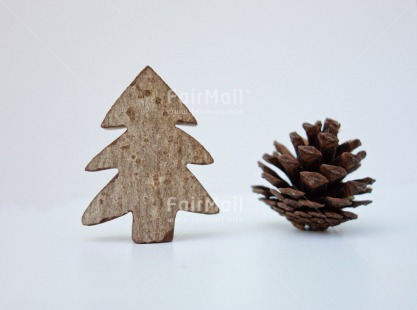 Fair Trade Photo Christmas, Closeup, Colour image, Horizontal, Peru, Pine, South America, Studio, Tree, White, Wood