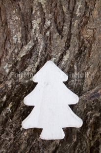Fair Trade Photo Christmas, Closeup, Colour image, Peru, Shooting style, South America, Tree, Vertical, White
