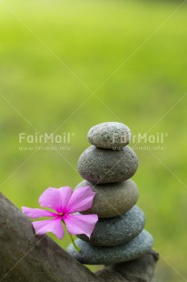 Fair Trade Photo Balance, Colour image, Condolence/Sympathy, Flower, Health, Nature, Peru, South America, Spirituality, Stone, Thinking of you, Vertical, Wellness