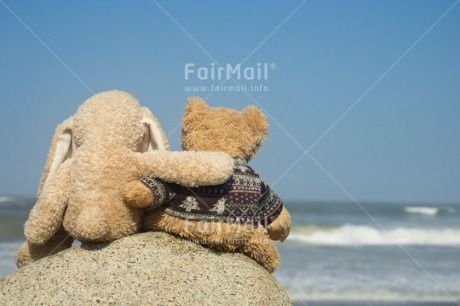 Fair Trade Photo Activity, Colour image, Cute, Friendship, Holiday, Horizontal, Outdoor, Peru, Relaxing, Sea, South America, Summer, Teddybear, Thinking of you