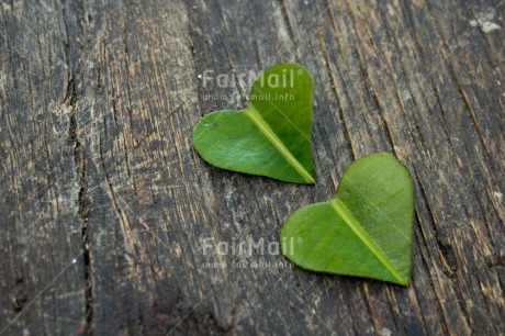 Fair Trade Photo Blue, Colour image, Green, Heart, Horizontal, Leaf, Love, Mothers day, Peru, Sky, South America, Valentines day, Wood