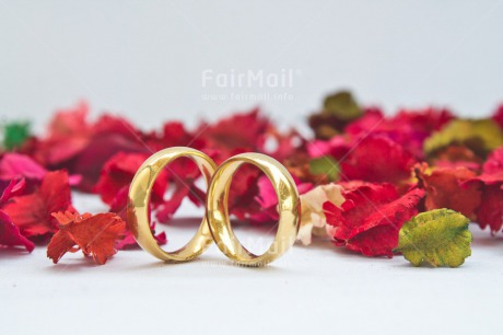 Fair Trade Photo Colour image, Flowers, Gold, Horizontal, Love, Marriage, Peru, Red, Ring, South America, Two, Wedding, White
