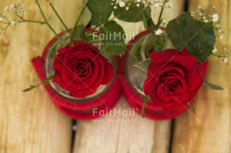 Fair Trade Photo Closeup, Colour image, Flower, Love, Mothers day, Peru, Red, Rose, South America, Studio, Thank you, Valentines day, Wood