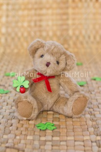Fair Trade Photo Animals, Bear, Birthday, Clover, Colour image, Congratulations, Friendship, Green, Peluche, Peru, South America, Success, Teddybear, Thinking of you, Well done