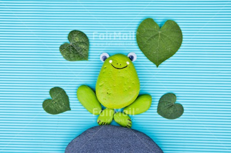 Fair Trade Photo Animals, Blue, Colour image, Frog, Green, Heart, Horizontal, Peru, Rock, South America