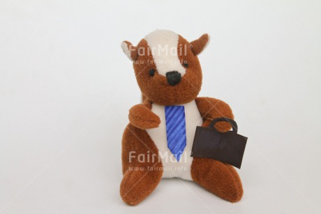 Fair Trade Photo Animals, Colour image, Funny, Horizontal, New Job, Peru, South America, Squirrel, Suitcase, Tie