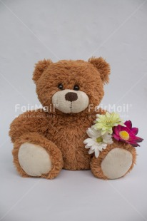 Fair Trade Photo Flower, Letter, Teddybear, Thank you