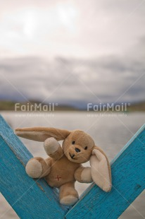 Fair Trade Photo Animals, Blue, Colour image, Lake, Peru, Rabbit, Sky, Smile, South America, Toy, Vertical, Water, Wood
