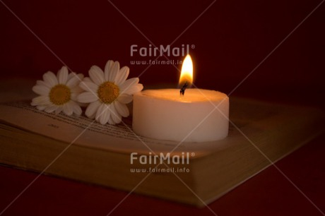 Fair Trade Photo Candle, Colour image, Condolence/Sympathy, Daisy, Flame, Flowers, Horizontal, Indoor, Light, Peru, Silence, South America, White