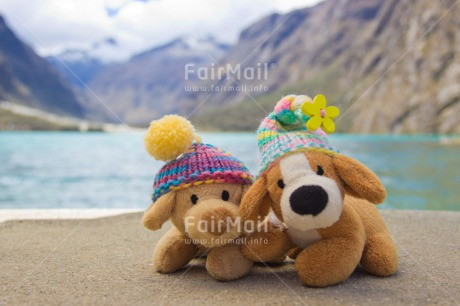 Fair Trade Photo Animals, Brother, Clothing, Cold, Colour image, Colourful, Day, Dog, Friendship, Hat, Horizontal, Lake, Mountain, Multi-coloured, Nature, Outdoor, Peru, Seasons, Sister, South America, Toy, Winter