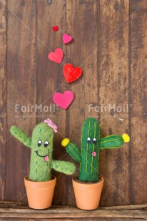 Fair Trade Photo Cactus, Colour image, Couple, Door, Friendship, Funny, Heart, Love, Peru, Red, South America, Valentines day, Wood