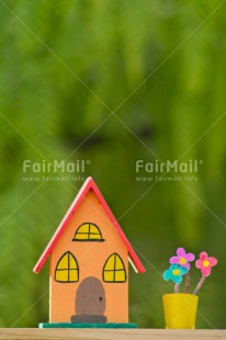 Fair Trade Photo Colour image, Flower, Home, Moving, New home, Peru, Pot, South America, Vertical, Welcome home