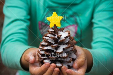 Fair Trade Photo Christmas, Closeup, Colour image, Hand, Horizontal, Peru, Pine, Shooting style, Snow, South America, Star