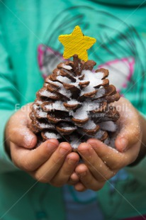 Fair Trade Photo Christmas, Closeup, Colour image, Hand, Peru, Pine, Shooting style, Snow, South America, Star, Vertical