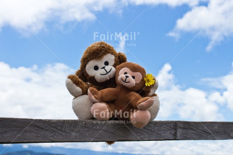 Fair Trade Photo Animals, Blue, Clouds, Colour image, Emotions, Fathers day, Friendship, Happiness, Love, Monkey, Mothers day, New baby, Peru, Sky, South America