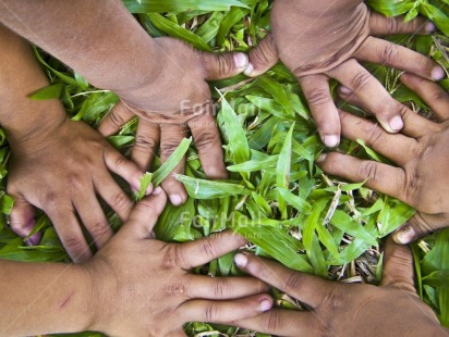 Fair Trade Photo Activity, Closeup, Colour image, Cooperation, Day, Friendship, Garden, Grass, Group of children, Hand, Horizontal, Outdoor, People, Peru, Playing, Seasons, South America, Spirituality, Strength, Summer, Together, Tolerance, Values