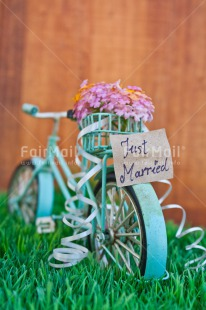 Fair Trade Photo Bicycle, Colour image, Colourful, Flower, Grass, Green, Letter, Love, Marriage, Peru, South America, Text, Thinking of you, Transport, Valentines day, Vertical, Wedding, Wood